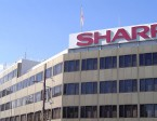 sharp-hq