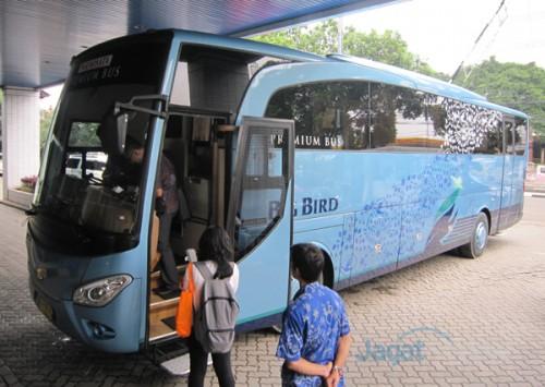 Blue Bird Bus >> Big Bird Premium Bus Hasil Kolaborasi Blue Bird Group