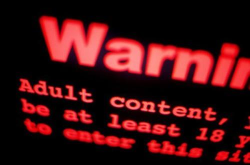 Pemerintah Bakal Terus Memblokir Situs Negatif