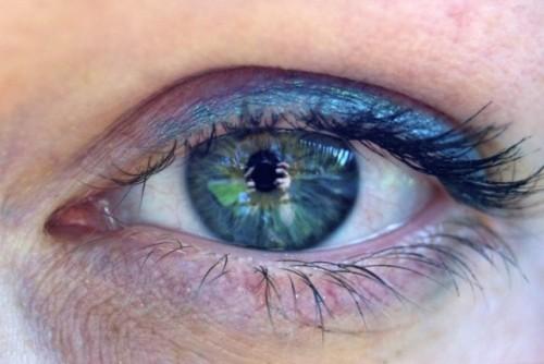 pupil 2