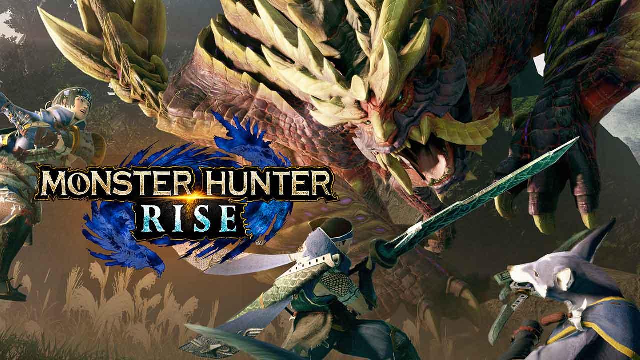 monster hunter rise switch hero